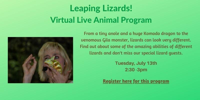 Leaping Lizards! Virtual Live Animal Program Tuesday, July 13 at 2:30pm